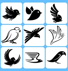 Birds icons set vector