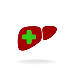 Liver with a medical cross logo green and red vector