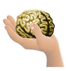 Hand holding a brain vector