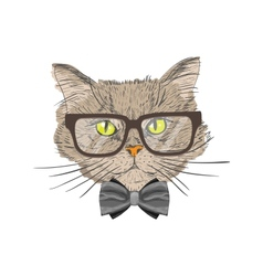 Portrait of hipster cat vector image