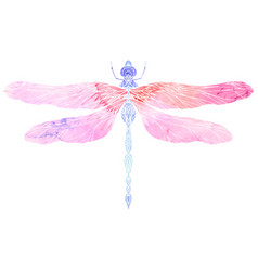 watercolor of dragonfly with boho pattern e vector image