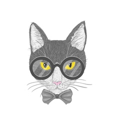 Hipster cat with yellow eyes vector