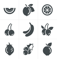 Fruit icons set design vector