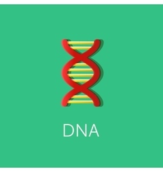 Dna or biotechnology icon flat colored style vector