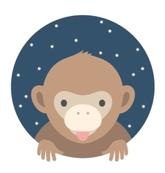 Animal set portrait in flat graphics - monkey vector