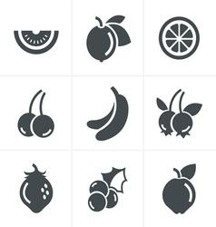 Fruit Icons Set Design vector image