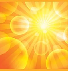 Sun light vector image vector image