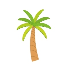 Palm tree plant nature season icon graphic vector