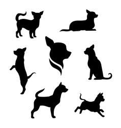 Chihuahua dog silhouettes vector