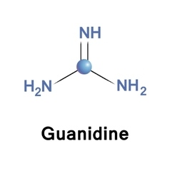Guanidine biochemical compound vector