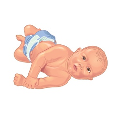 Baby rolling on floor vector image vector image