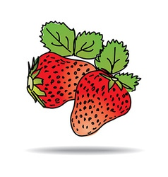 Freehand drawing strawberry icon vector image vector image