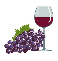 grapes and a wine glass vector image