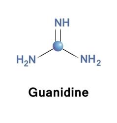 Guanidine biochemical compound vector