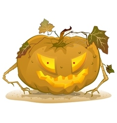 Terrible pumpkin lantern for Halloween Holiday vector image vector image