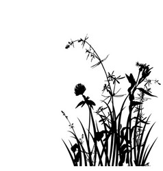 Wild plants silhouettes vector