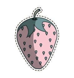 Fresh fruit with cut line isolated icon vector