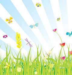 Grass flowers butterflies meadow vector
