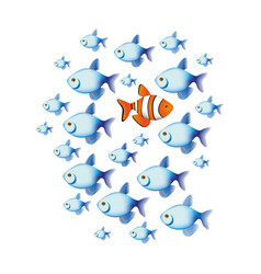 Colorful set collection fish aquatic animal with vector