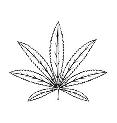 green leaf of hemphippy single icon in outline vector image