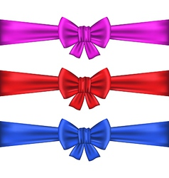 Set colorful gift bows with ribbons vector image