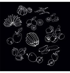 Set of vegetables and fruits sketch vector image