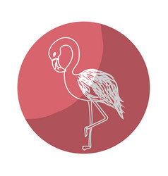 Sticker beauty and exotic flamingo bird animal vector