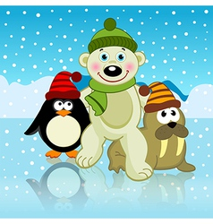 Polar bear walrus penguin friends vector
