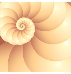 Abstract seashell background vector