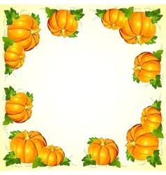 Bright orange pumpkins frame vector image
