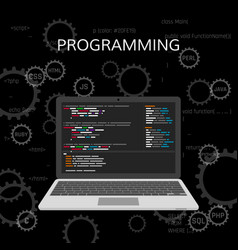 programming and coding web development concept vector image vector image