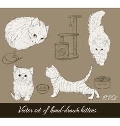 Vintage set with cute kittens vector image vector image