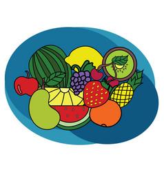 fruits design set cartoon free hand draw doodle vector image