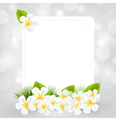 Gift card with frangipani vector
