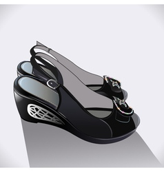 shoes black patent leather vector image