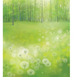 Green forest field vector