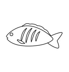 Fish sea food vector