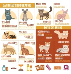 Cats infographics set vector