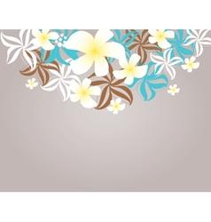 Tropical flowers frangipani plumeria vector
