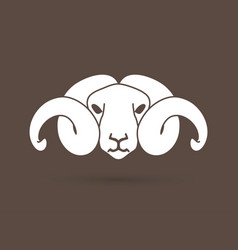 Angry white sheep face head with big horn vector