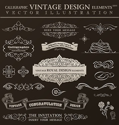 Calligraphic design elements vintage set ornament vector image