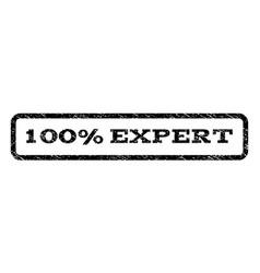 100 percent expert watermark stamp vector