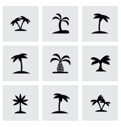 Palm icon set vector