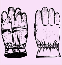 Warm winter gloves vector