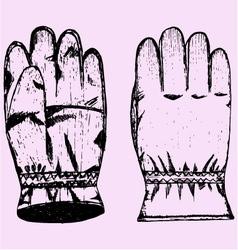 Warm winter gloves vector