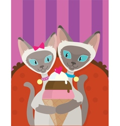 Siamese cats ice cream vector