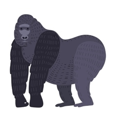 Gorila monkey rare animal vector