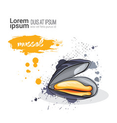 mussel hand drawn watercolor sea food on white vector image