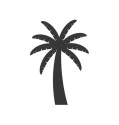palm tree plant nature season icon graphic vector image