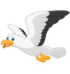 Cartoon smiling seagull on white background vector